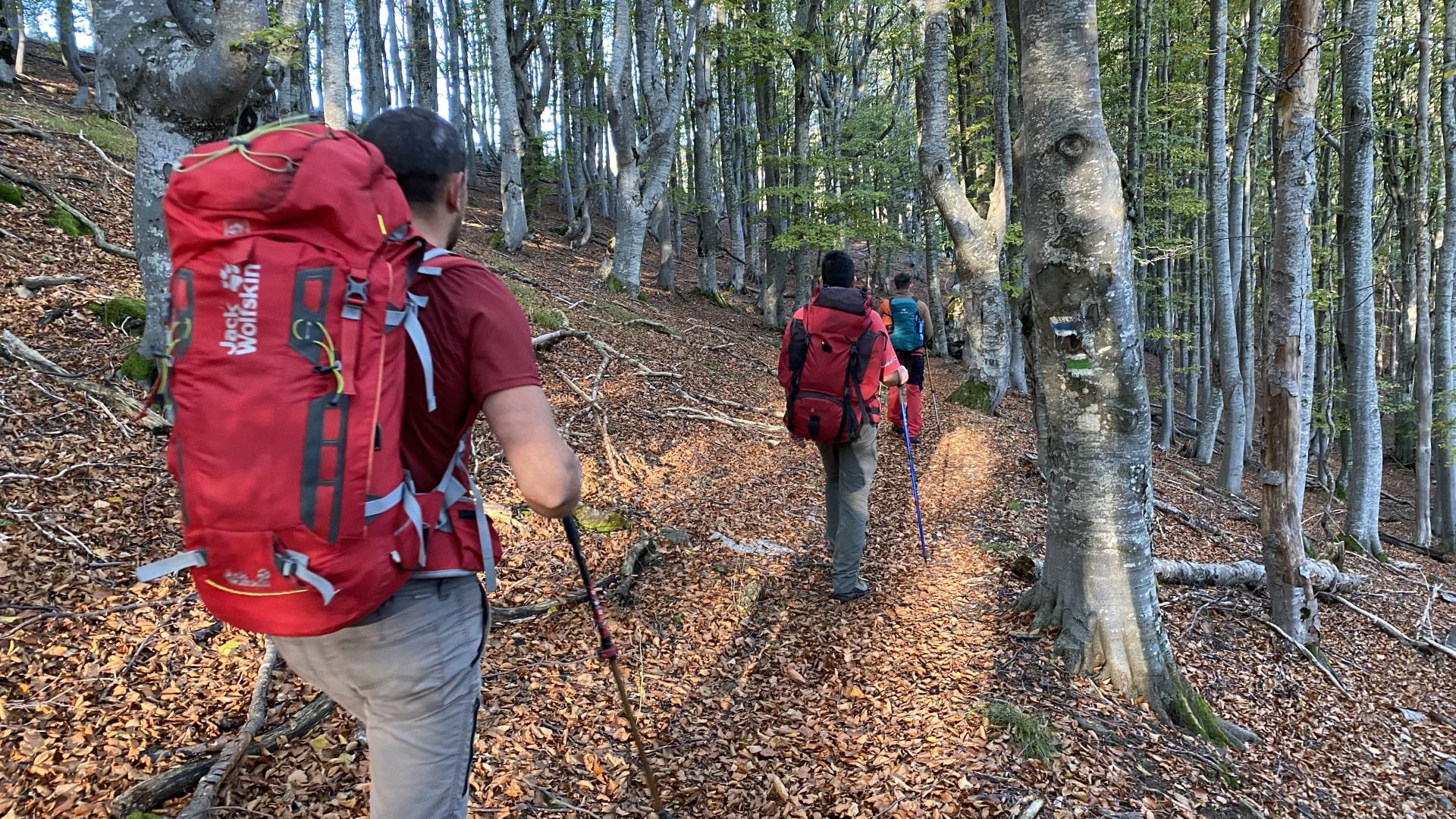 Hiking in Central Balkan National Park